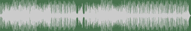 Alex Antimain - Mistery (Original Mix) [Digital Monument] Waveform