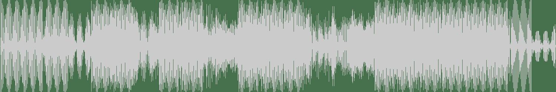Hauswerks, Solo Tamas - Flash Life feat. Solo Tamas (Original Mix) [Sola] Waveform