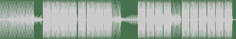 DJ Rhaa - The Acceptance (Dwight Evan Remix) [Strawberry Digital Made Recordings] Waveform