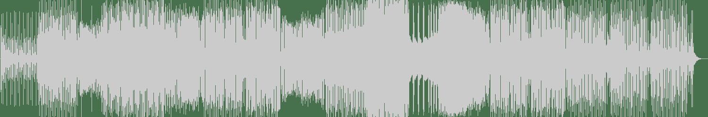 Azzido Da Bass, Point Blvnk - Hanseat (Original Mix) [RUN DBN] Waveform