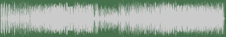 Riot Jazz Brass Band - Corn On The Cob (Original Mix) [First Word Records] Waveform