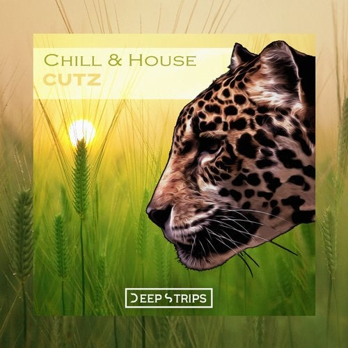 Chill & House Cutz