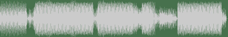 MizterRab - Salt Shaker (Original Mix) [Play This! Records] Waveform