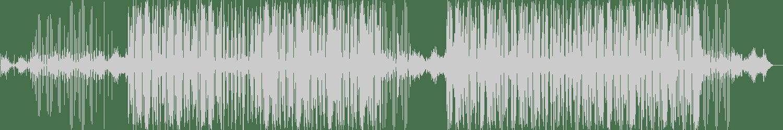 Quantum Soul - Evocation (Original Mix) [Tuba Records] Waveform