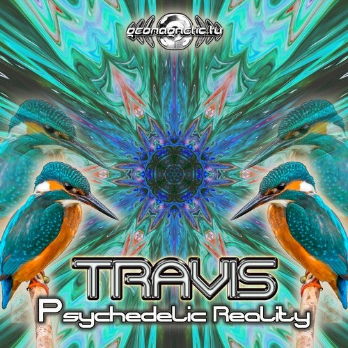 Psychedelic Reality               Original Mix