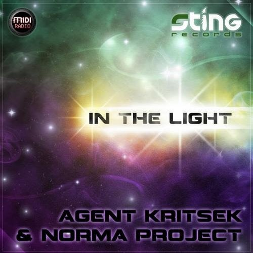 Enlightenment (feat. Spinney Lainey)               Norma Project Remix