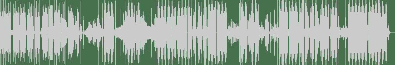 Mat Wobble Grinder - Maximum Speed (Original Mix) [Rave Forest Records] Waveform
