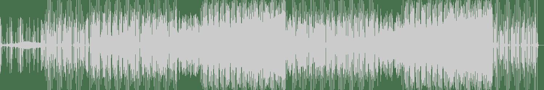 Tru Fonix - In the Corner feat. Stush (Original Mix) [Punks] Waveform