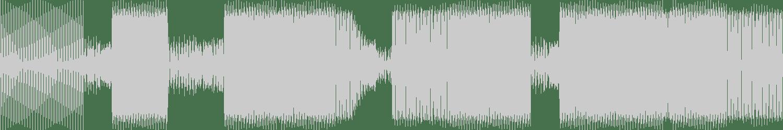 Mario D'ambrosio - Disco Night (Rhoowax Remix) [Mushroom Smile Records] Waveform