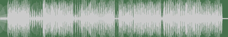 Dadifox - What Percussion (Original Mix) [Principe] Waveform