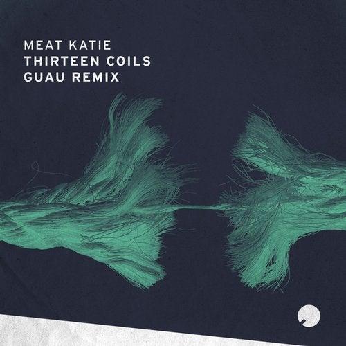 Thirteen Coils