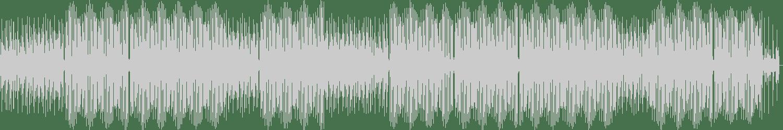 Vedran Komm - Realism (Original mix) [Animus] Waveform
