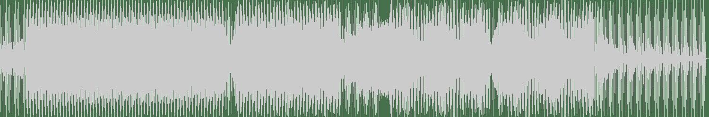 Bitch Bros - Direct Access (Original Mix) [Groove Worxx] Waveform