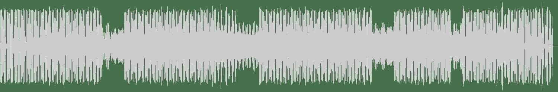 Brickman - Fractal Vision (Original Mix) [BRLN SPRT] Waveform