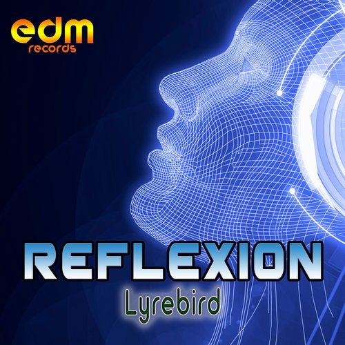 Lyrebird               Original Mix