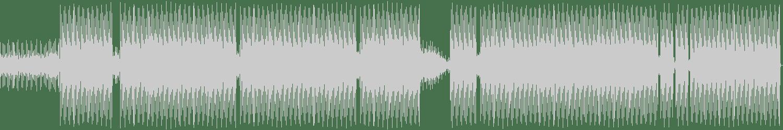 Spin Head - Perception (Original Mix) [Sound Energy Flux] Waveform