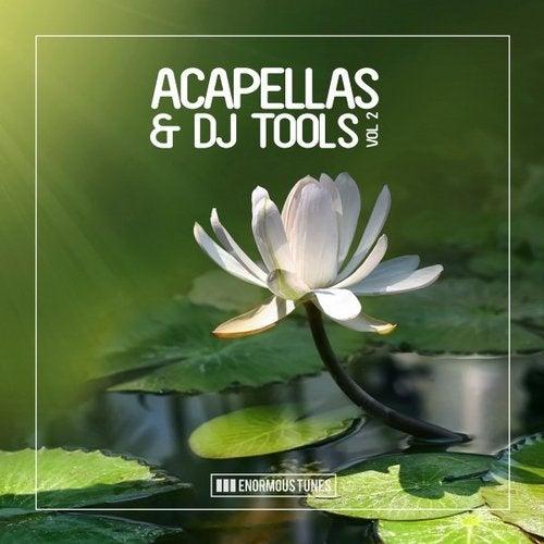 Enormous Tunes - Acapellas & DJ Tools, Vol. 2