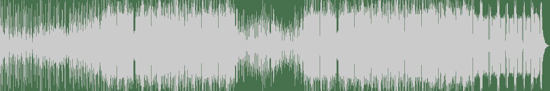 Invisible Landscape, Dimmi Mix - Blow My Kush (feat. Dimmi Mix) (Original Mix) [119 Sound] Waveform