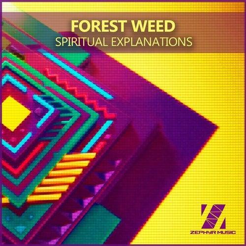 Spiritual Explanations