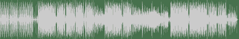 Re_MIZ - MushroomShake (Original Mix) [Noexcuse Records] Waveform
