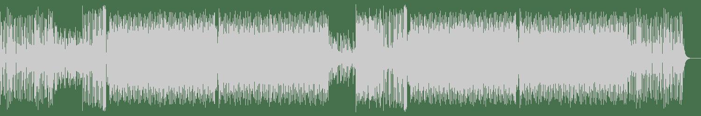 The Burner Brothers - Armed and Dangeroud (Original Mix) [Patrol The Skies Music] Waveform