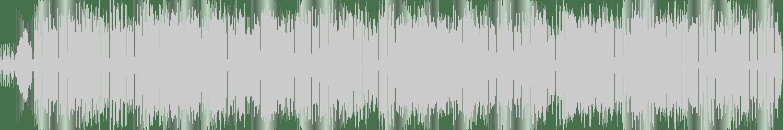 Rick Sanders, Mpm - Dark Sides (Original Mix) [Smiley Fingers] Waveform