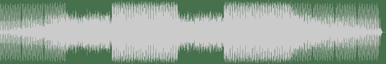 Black Eagles - Show Me the Way (Original Mix) [Fabrique Recordings] Waveform
