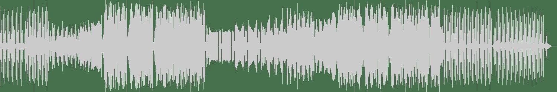 illusionize, VINNE - Bring It Back (WOAK Remix) [Up Club Records] Waveform