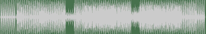 David Bau - My Master (Original Mix) [1101 Records] Waveform