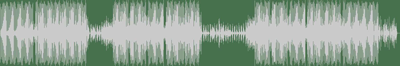 Weiss (UK) - Bounce (Original Mix) [DIRTYBIRD] Waveform