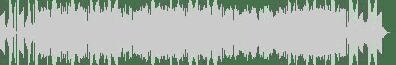 Stonebridge - Meet in the Middle feat. Haley Joelle (StoneBridge Extended Mix) [Stoney Boy Music (Believe)] Waveform