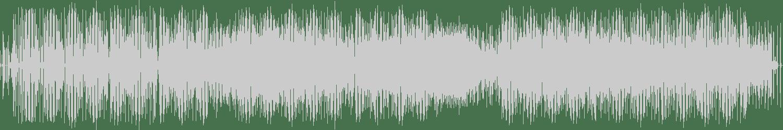 Maurice Giovannini - Reef Valley (Adina Paun Remix) [Vibe Experience] Waveform