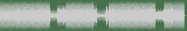 Shlomi Aber - Propaganda (Paul Ritch Remix) [Ovum Recordings] Waveform