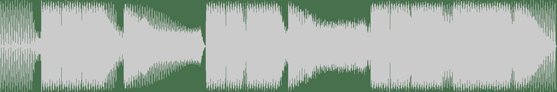 Franx - Atmosphere (Original Mix) [SonarWave Records] Waveform