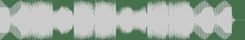 Salamanda - 9MM (Frey Edit) [Bunny Tiger Dubs] Waveform
