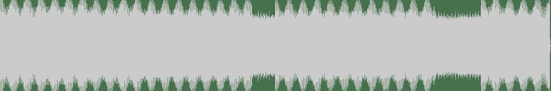 Solenoid - Present State (Original Mix) [Gastspiel Records] Waveform