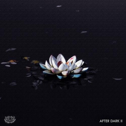 Lilysse After Dark: Vol. 2