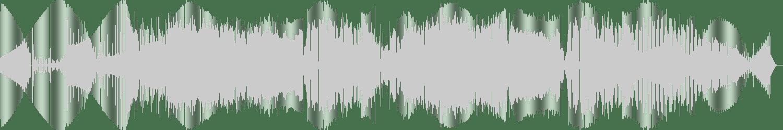 Edun, Oscar Salguero - Survive (Electrophunk Remix) [Vinyl Loop Records] Waveform