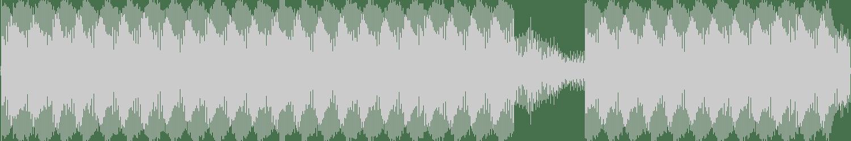 Relham - Wut (Gotshell RMX) [Affekt Recordings] Waveform