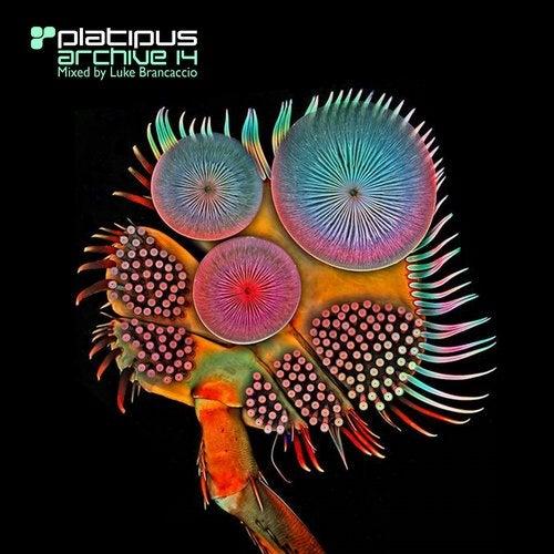 Platipus - Archive 14