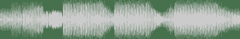 Noize Makerz - Pay Attention (Original Mix) [Border Records] Waveform