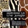 Welcome To The Jungle (Sebastian Reza Remix)