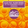 Do You Remember House? feat. Palmer Brown (Bob Sinclar & The Cube Guys Extended Remix)