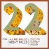 Night Falls On My Back (Original Mix)