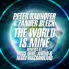 The World Is Mine (Marc MacRowland Remix)