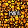 Primitive Science (Bushwacka! Remix)