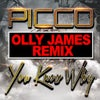 You Know Why (Olly James Remix)