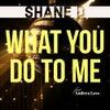 What You Do to Me (Original Mix)