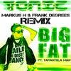 Big Fat featuring Tarantula Man (Markus H & Frank Degrees Remix)