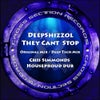 They Can't Stop (Chris Simmonds House Proud Dub)